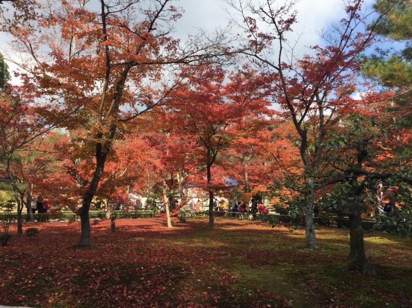 Grounds of Kinkakuji