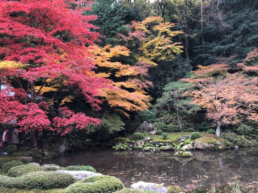 One of the gardens in Nanzenji