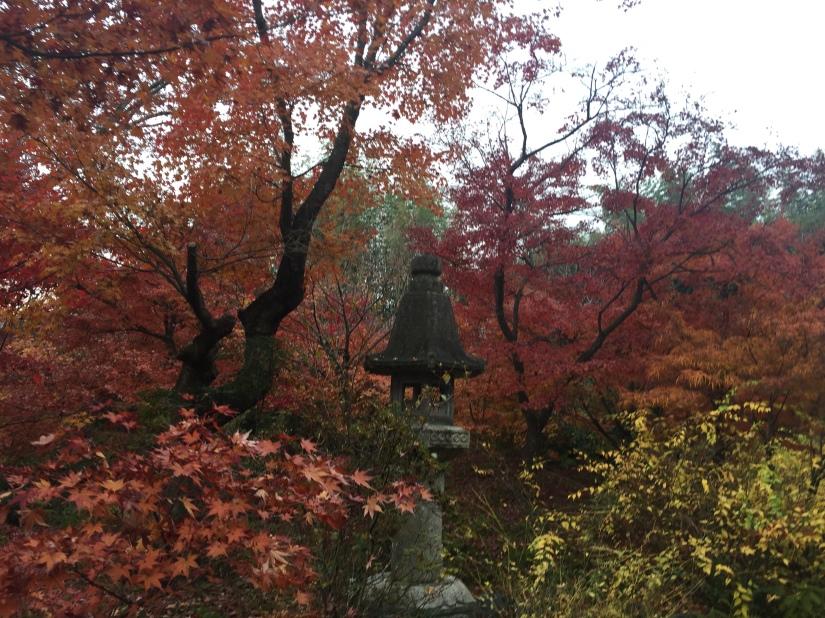 A random temple we were shown by a local in Arashiyama